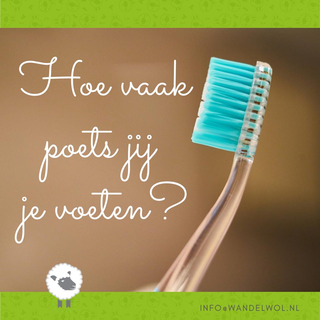 voeten, poetsen, gebit, tanden, verzorgen, dagelijks